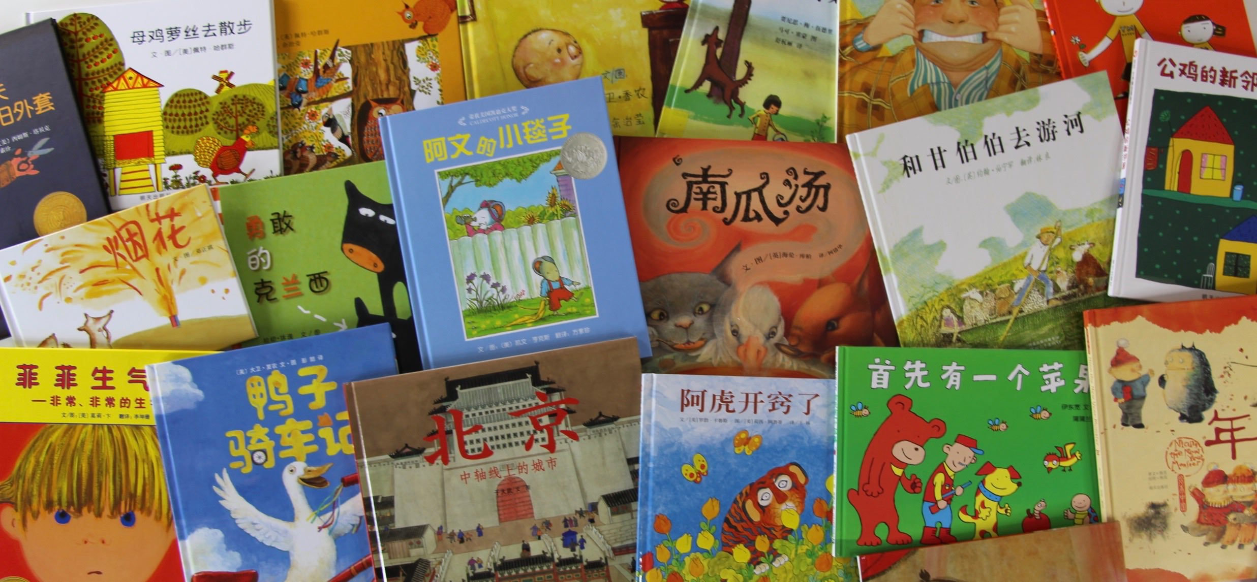 Photo of an assortment of Mandarin Chinese books for children.